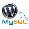 wordpressandmysql_catch