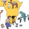 ayashiitanken_africa_catch